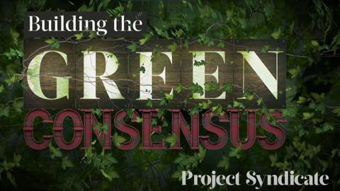 Building the Green Consensus Thumbnail