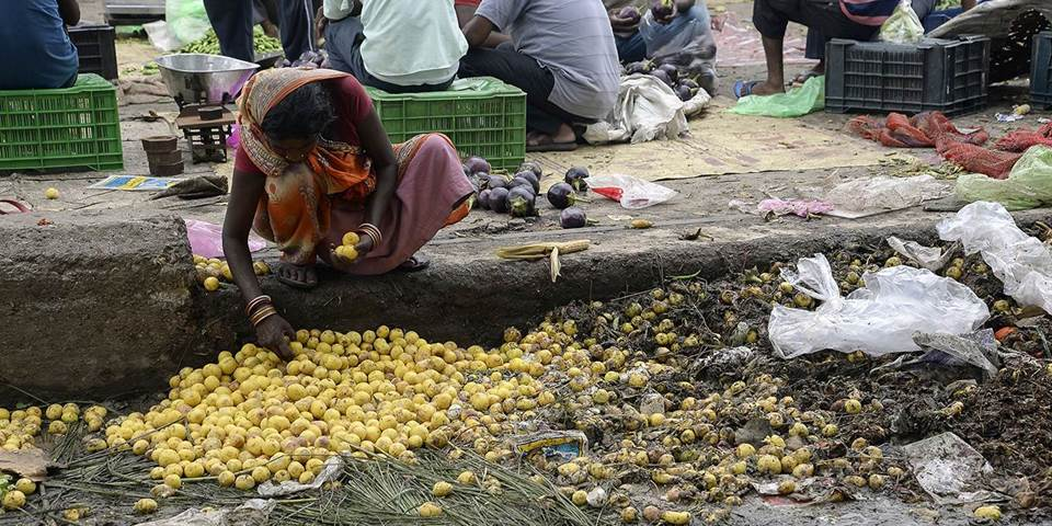 An Indian woman picks out lemons left discarded as rotten on the edge of a vegetable market