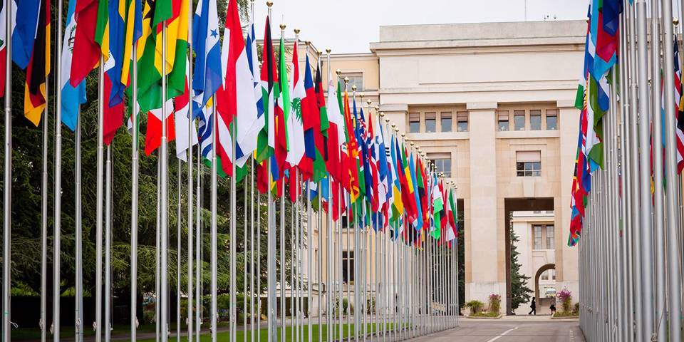 dervis94_EntienouGettyImages_UnitedNationsflags