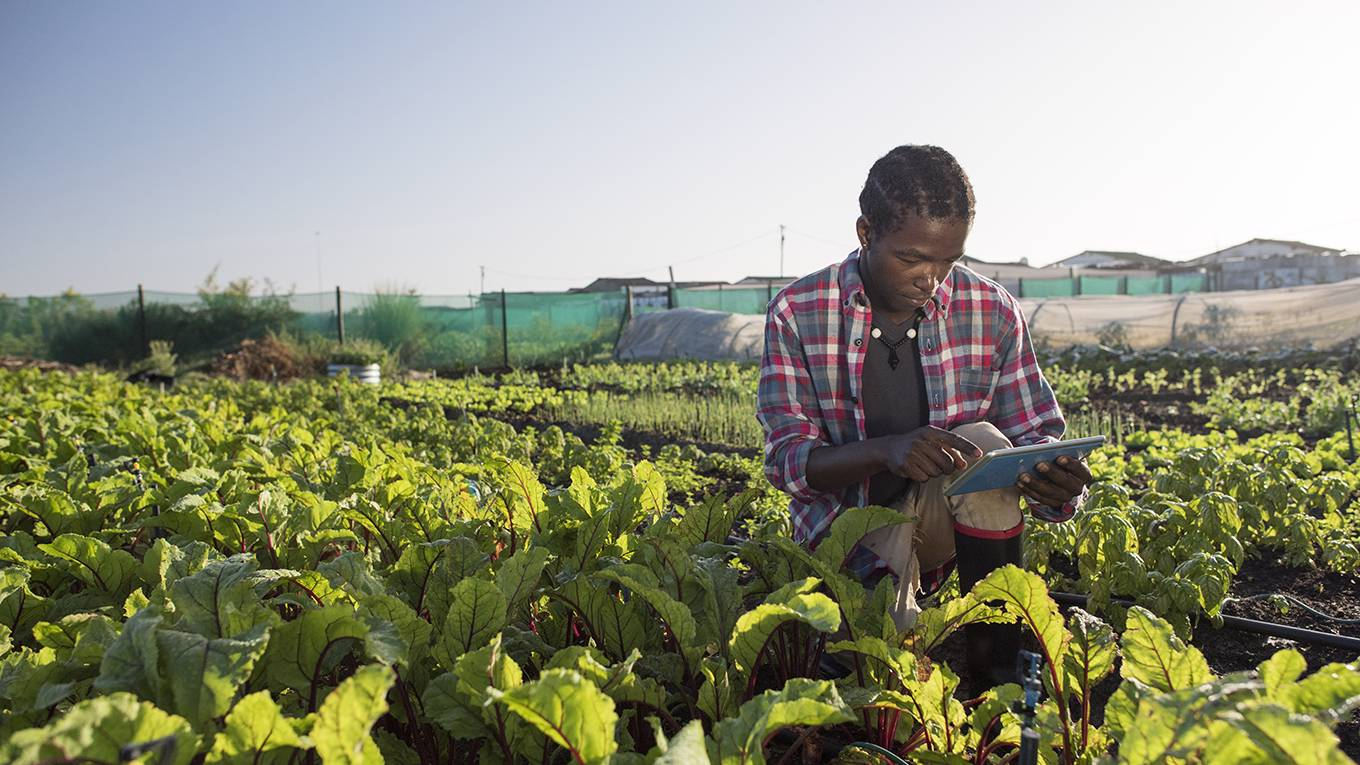 Climate Leadership from Developing Countries | by Lee White & Tanguy Gahouma