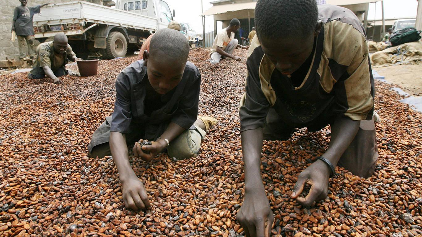 stiglitz290_SIA KAMBOUAFP via Getty Images_child cocoa slavs