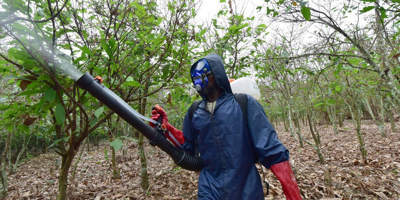 The True Price of Pesticides Is Unaffordable